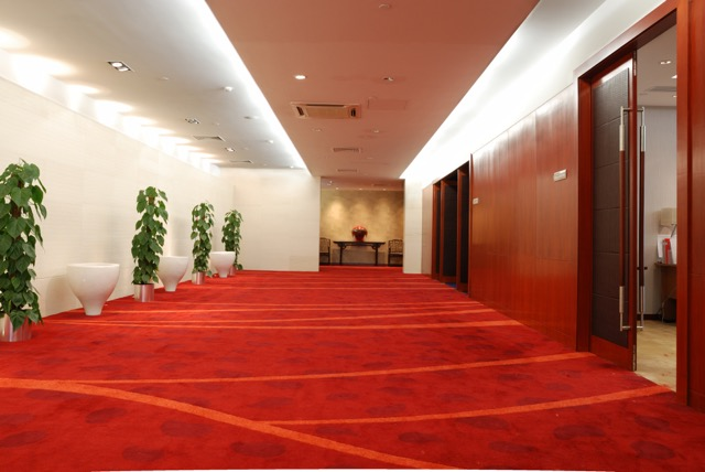 Carpet Cleaning Db Services